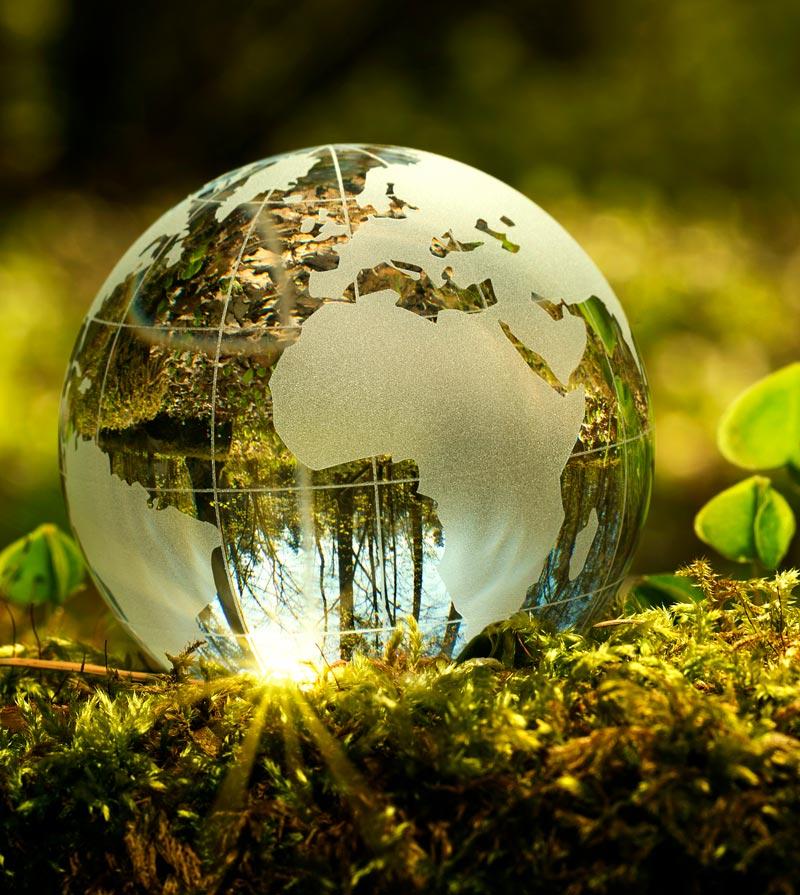 Implicados con el futuro del planeta